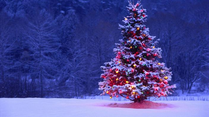 A Christmas tree decorated with coloured lights in a snow-covered field